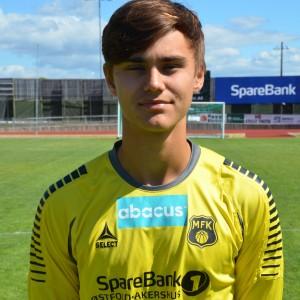 Nikolai Gromholt (3)